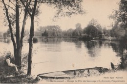 91) BALLANCOURT - ETANGS DE L ILE DU SAUSSAYE : E. JOUSSET PROPRIETAIRE - (ANIMEE - PECHEUR A LA LIGNE - 2 SCANS) ) - Ballancourt Sur Essonne