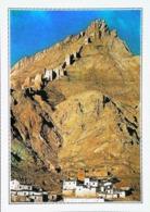 Tibet  Ruines Du Village De Tingri  Années   80s - Tibet