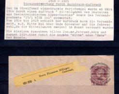 Österreich  Vorausentwertungen 1910 - 1921  Vorausentwertung  Streifband - Gebruikt