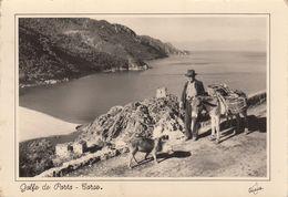 PORTO (Corse Du Sud): Golfe De Porto - Vieil Homme Avec Son âne - Andere Gemeenten