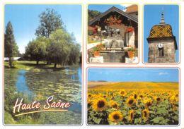 70-HAUTE SAONE-N° 4455-D/0087 - France