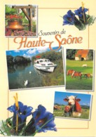 70-LA HAUTE SAONE-N° 4456-B/0349 - France