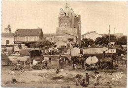 LES SAINTES MARIES DE LA MER - Pélerinage Du 25 Mai - Campement De Bohémiens  (2054 ASO) - Saintes Maries De La Mer