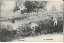 Savoie : Les Fenaisons - Frankreich