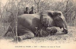 Niger - SAY - Eléphant Tué Dans Le Torodi - Ed. Labitte. - Niger
