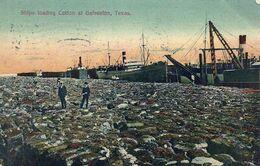 07 - 2020 - USA - ETATS UNIS - TEXAS - Ships Loading Cotton At Galveston - Galveston