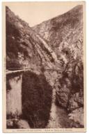 CPA ALGERIE - 4. Gorge De La Chiffa - Route De Médéa Et La Rivière - Algérie