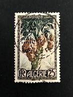 Colonie ALGERIE N° 280 De 1950 CIMA 7 Indice 4 Perforé Perforés Perfins Perfin Superbe !! - Algérie (1924-1962)