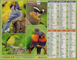 Calendrier Du Facteur 2019 (oiseaux) - Kalender