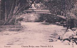 Kenya, Nairobi, Chania Bridge (12) - Kenia