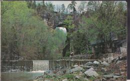 C. Postale - View Of Natural Bridge And Water Falls - Natural Bridge - Circa 1960 - Non Circulee - A1RR2 - Etats-Unis