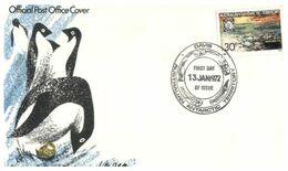 (E 24) Australia Antarctic Territory (2 Covers) - 1972 - Casey Postmarks - FDC