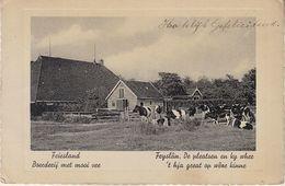 Friesland Ak154834 - Unclassified