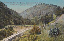 ROMANIA FORESTRY GUSTAV EICHLER Funicularul 1917 - Romania