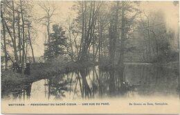 Wetteren  *  Pensionnat Du Sacré-Coeur  -  Une Vue Du Parc - Wetteren