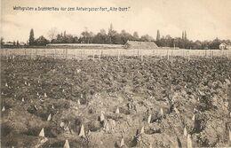 """Oude God / Wolfsgruben U. Dratverhau Vor Dem Antwerpener Fort """" Alte  Gott """" / Verdedigingsgordel Met Houten Punten ?? - Mortsel"""
