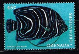 Grenada Und Grenadinen 1980 ,Michel# 2496 O Fische: Semicircle Angelfish (Pomacanthus Semicirculatus) - Grenada (1974-...)