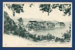 Monaco - Carte Postale - Entre Les Oliviers - Altri
