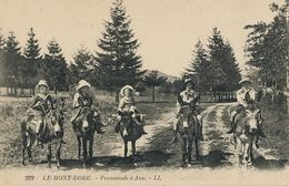 Promenade à Ane. Donkey Riding Enfants.  Le Mont Dore - Donkeys