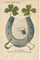 Araignée Spider Art Card   Porte Bonheur Fer à Cheval Et Trèfle à 4 Feuilles. Pottstown Pa USA - Insects