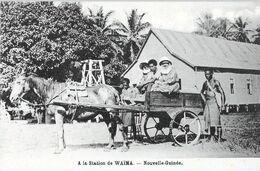 PAPOUASIE/NOUVELLE-GUINEE: A LA STATION DE WAÏMA < ATTELAGE DE TRANSPORT - Papua-Neuguinea