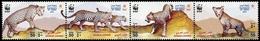 2004, Oman, 590-93, ** - Oman