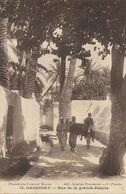 Laghouat Rue De La Grande Sequia   Edit Attallah Bouameur Prouho Arabe à Ane - Laghouat