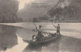48  Gorges Du Tarn. Un Troupeau Traversant En Barque Le Tarn Au Cirque Des Beaumes - Gorges Du Tarn