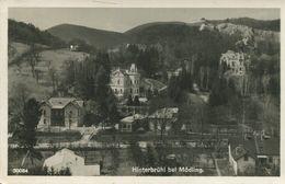 009100  Hinterbrühl  Teilansicht - Other