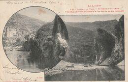 48  Saint Chely Du Tarn.  Vue - Saint Chely D'Apcher