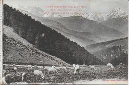 Col D'Aspin : Les Pâturages Et Le Pic Du Midi ( Pyrénées Centrales - 4e Série) - Bagneres De Bigorre