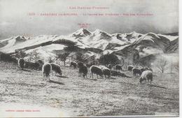 Bagnères De Bigorre - La Chaine Des Pyrénées, Vue Des Palomières - Bagneres De Bigorre