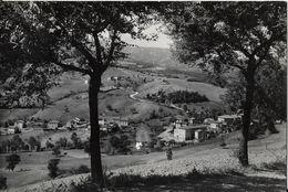 V-LAGRIMONE-M.712-PARTICOLARE - Parma