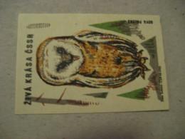 Ziva Krasa Poster Stamp Vignette CZECHOSLOVAKIA Label Owl Owls Bird Birds - Búhos, Lechuza