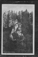 AK 0531  Napoleonfelsen Bei Kelheim - Verlag Zerle Um 1930-50 - Kelheim