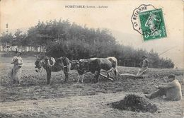 1910 - NOIRETABLE - Labour - Noiretable