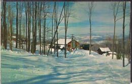 C. Postale - Belleayre Mountain - Circa 1960 - Non Circulee - A1RR2 - Catskills