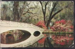 C. Postale - Magnolia Gardens - Charleston - Circa 1960 - Non Circulee - A1RR2 - Charleston