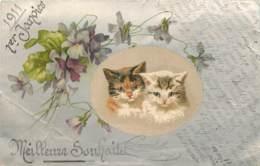 CHATS   - CATS  - BELLE ILLUSTRATION - 1 ER JANVIER 1911 - Cats