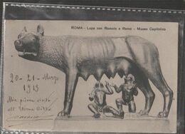 ROMA LUPA CON ROMOLO E REMO  Viaggiata-SI-1913-fp-mt.6225 - Musées