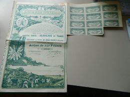 ACTION DE 250 FRANCS MINES DE FER DE ROUINA (ALGERIE) 1920 - Mines