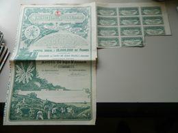 ACTION DE 250 FRANCS MINES DE FER ROUINA (ALGERIE) 1920 - Mines