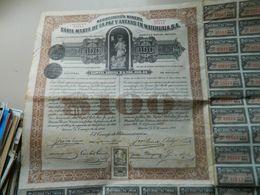 ACTION $ 100 OR NACIONAL. NEGOCIACION MINERA SANTA MARIA DE LA PAZ Y ANNEXAS EN MATEHUALA S A  (MEXICO  )1920 - Mines