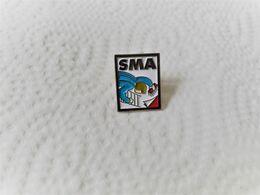 PINS   BTP SMA / LOGO / 33NAT - Pins