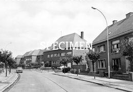 Hospice En Moederhuis-  Zelzate - Zelzate