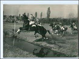V656/ Velka Pardubicka 1953 Tschechien Pferderennen Hindernisrennen Foto AK  - Pferde