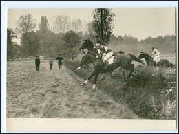 V658/ Velka Pardubicka 1953 Tschechien Pferderennen Hindernisrennen Foto AK  - Pferde