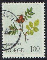 Norwegen 1980, MiNr 826, Gestempelt - Norwegen