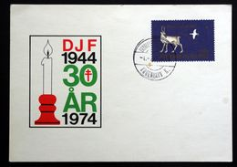 Greenland  1974  Cards ( Lot 119 ) - Lettres & Documents
