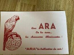 V P   : BUVARD  : Oiseau  Le  Perroquet   ARA , Cire - Unclassified